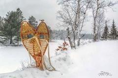 Merry Christmas | Sponsor: Backyard Birder | Artist: Debby McKay