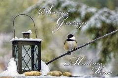 Season's Greetings - Meilleurs Voeux | Sponsor: Delta Bingo | Artist: Debb Pero