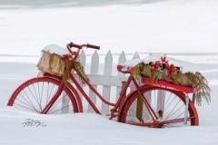 Merry Christmas | Sponsor: Journal Printing | Artist: Debby McKay